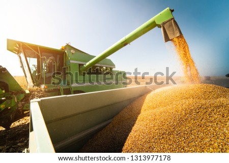 agricultural field after harvesting and combine harvester reaps a crop red car on a field aerial v stock photo © artjazz