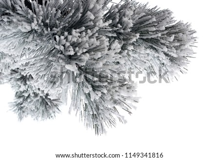 Christmas tree with snow-covered branches isolated on gray background. Sketch for greeting card, fes Stock photo © Lady-Luck