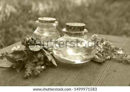 Two bottles of basil essential oil with fresh basil leaves on white background Stock photo © madeleine_steinbach