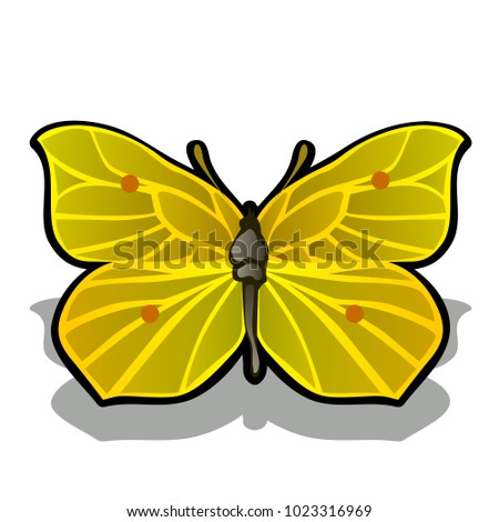 The butterfly is made from the pulp of ripe lemon isolated on white background. Vector cartoon close Stock photo © Lady-Luck