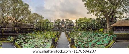 Grande panorama templo bali ilha Indonésia Foto stock © galitskaya