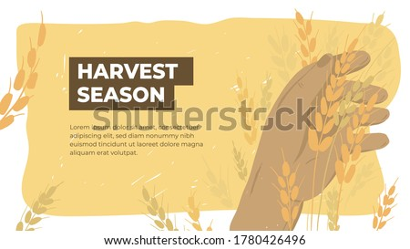 Harvesting text template with farmers Vector layout banner posters Stock photo © frimufilms