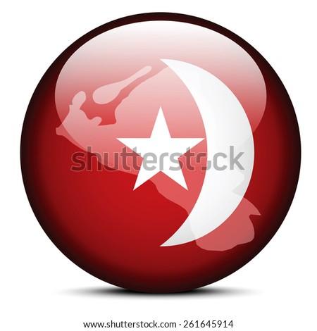 Térkép zászló gomb Egyesült Arab Emírségek vektor kép Stock fotó © Istanbul2009