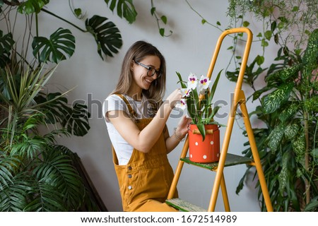 Smiling lovely woman gardener working and taking care of ficus  Stock photo © deandrobot