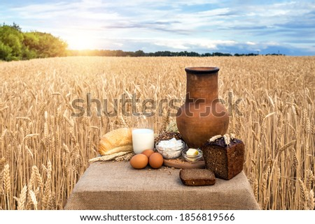 Cereal food and milk bottle and milk glass  on wooden sky blue table.Meal or breakfast hi-vitamin an stock photo © Bigbubblebee99