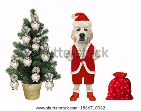 New year or Christmas greeting card with dog, bag and bank-pig Stock photo © heliburcka