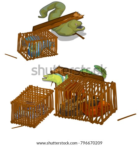 Set of moray eels caught in the wooden cage isolated on white background. Vector cartoon close-up il Stock photo © Lady-Luck