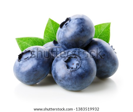 fresh raw organic blueberries on white background food concept space for text stock photo © denismart