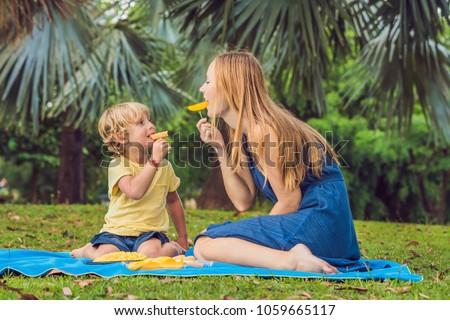 ママ ピクニック 公園 食べる 健康 ストックフォト © galitskaya
