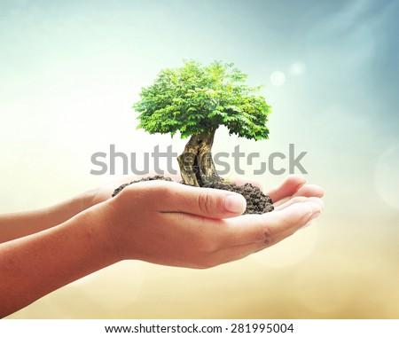 Világ környezet nap emberi kezek tart Stock fotó © user_10144511