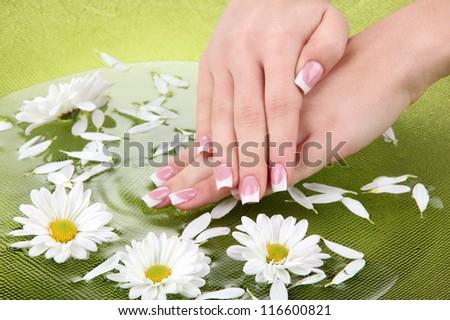 Mooie handen manicure groene bladeren Stockfoto © serdechny