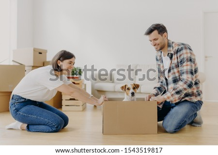 Horizontal shot of lovely woman moves cardboard box with small puppy to husband side, spend free tim Stock photo © vkstudio