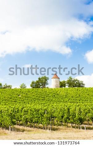 Vinha moinho de vento departamento viajar europa videira Foto stock © phbcz