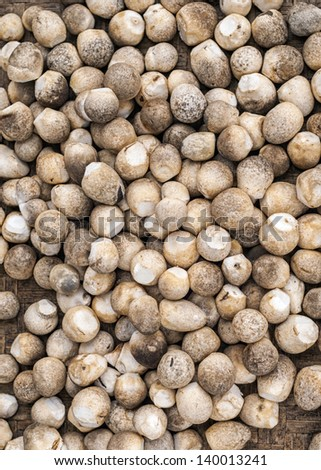 Stock photo: Vietnam Dong Hoi - bunch of fresh mushrooms for sale at market.