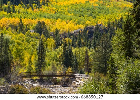 Cair amarelo verde cores montanha floresta Foto stock © billperry