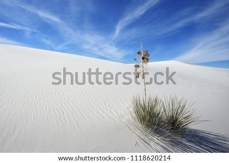 gypsum sand background from White Sands National Monument, New M Stock photo © PixelsAway