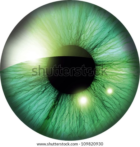 Texture of human colorful eyeballs isolated on green background. Sketch for card, seamless texture f Stock photo © Lady-Luck