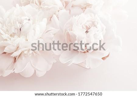 パステル 花 咲く フローラル 芸術 結婚式 ストックフォト © Anneleven