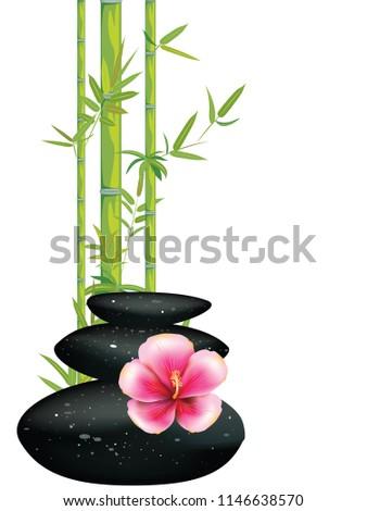 estância · termal · pedras · verde · bambu · vetor · tropical - foto stock © smeagorl