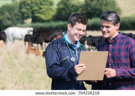 dairy farmer talking to vet in field with cattle in background stock photo © highwaystarz
