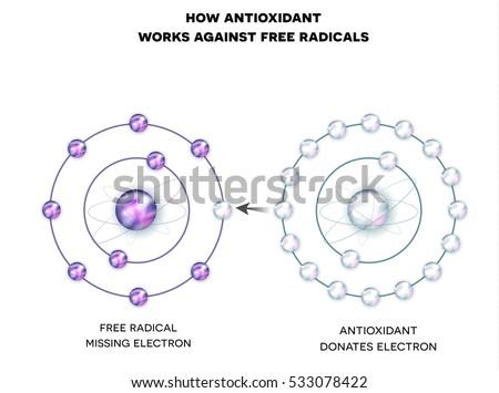Antioxydant libre trois molécules à l'intérieur humaine Photo stock © Tefi