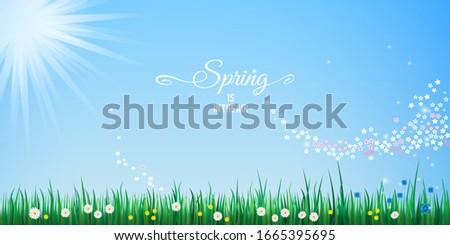 Merhaba bahar poster yeşil ot mavi gökyüzü çim Stok fotoğraf © olehsvetiukha