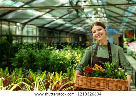 Image of joyous florist woman 20s wearing apron carrying basket  Stock photo © deandrobot