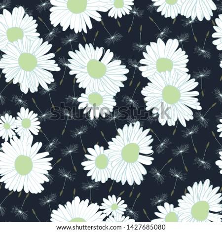 ромашка · цветок · Ромашки · медицинской · вектора - Сток-фото © margolana