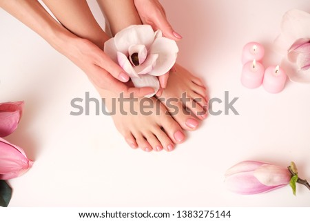 Beauty delicate hands with manicure holding pink flower close up. Beautiful nails and flower close-u Stock photo © serdechny