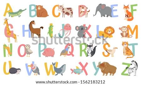 Angol ábécé levél gyerekek nyelv bagoly Stock fotó © orensila