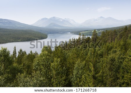 Lake in the forest, Sohlbergplassen - Rondane National Park, Nor Stock photo © slunicko