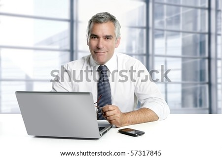 Senior businessman gray hair working on laptop in modern office  Stock photo © boggy