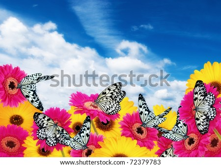 Butterflies and Gerber Daisies against a cloudy blue sky. stock photo © pixelmemoirs