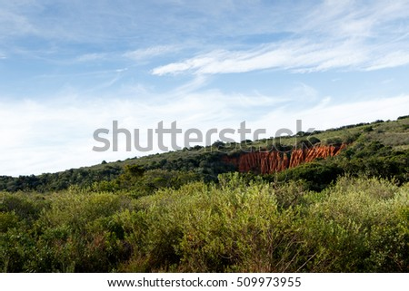 Green grass with soil erosion The Addo Elephant National Park Stock photo © markdescande