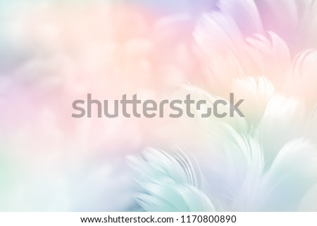 Colorful pink, magenta watercolor background for Valentine day o Stock photo © Margolana