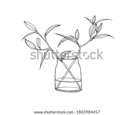 two glass vases of painting leaf branch and flower on a blue paper background with long shadows stock photo © artjazz