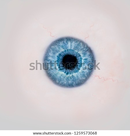 Texture of human colorful eyeballs isolated on black background. Sketch for card, seamless texture f Stock photo © Lady-Luck