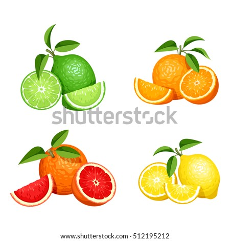 Vetor conjunto limão laranja cal toranja Foto stock © kyryloff