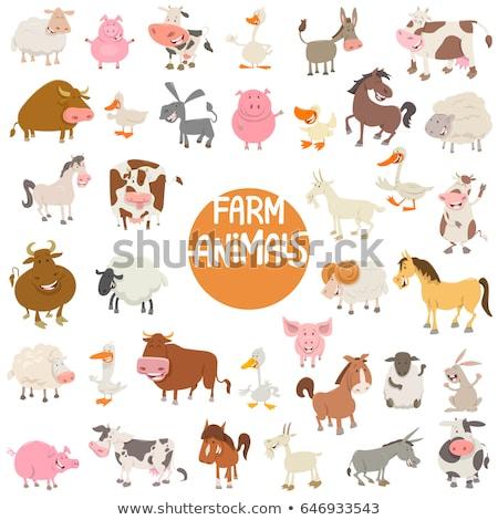 牛 家畜 文字 漫画 実例 幸せ ストックフォト © izakowski