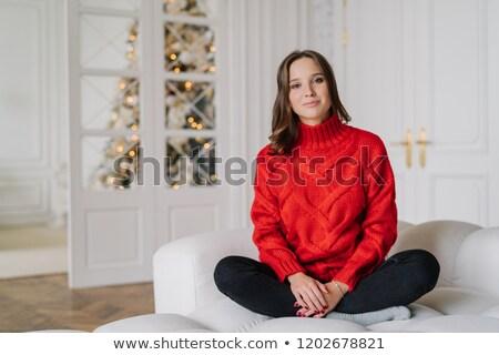 Fotó kellemes néz fiatal nő piros pulóver Stock fotó © vkstudio