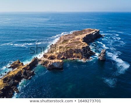 Vulkanisch schiereiland Portugal shot gebouw Stockfoto © diego_cervo
