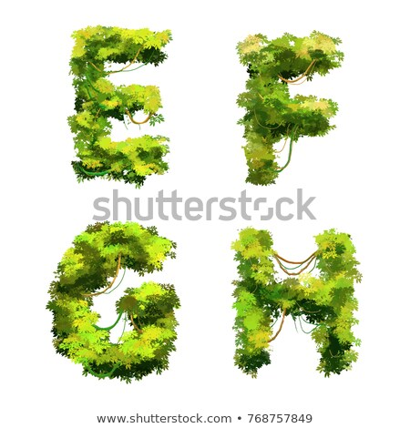 Cute cartoon tropical vines and bushes font on white, E F G H glyphs Stock photo © evgeny89