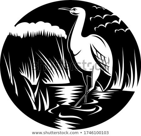 Egret or Heron in Marsh Circle Woodcut Black and White Stock photo © patrimonio