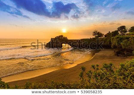Bali pôr do sol silhueta pacífico paraíso árvore Foto stock © DamonAce