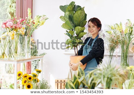 young woman holds pot with flower in shop stock photo © paha_l