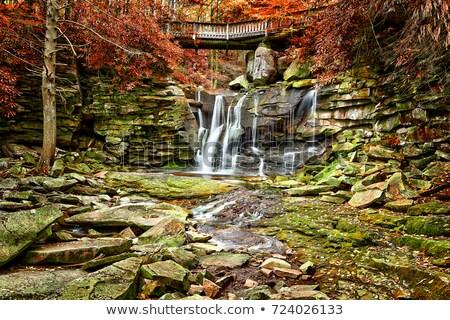 Stockfoto: Najaar · West · Virginia · vallen · vertragen · sluiter · snelheid