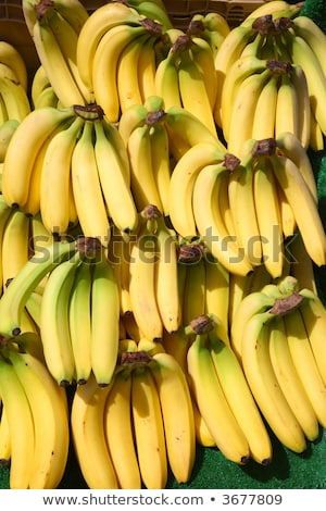 Lots of bunches of bananas outside a greengrocer shop. Stock photo © latent