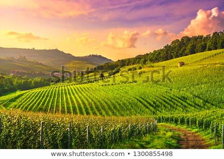 Foto stock: Hills · pôr · do · sol · panorâmico · ver · montanhas · norte