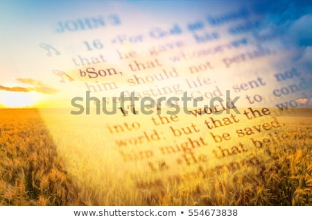 Gospel of John Stock photo © skylight