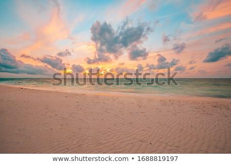calm ocean and beach on tropical sunrise stock photo © dmitry_rukhlenko